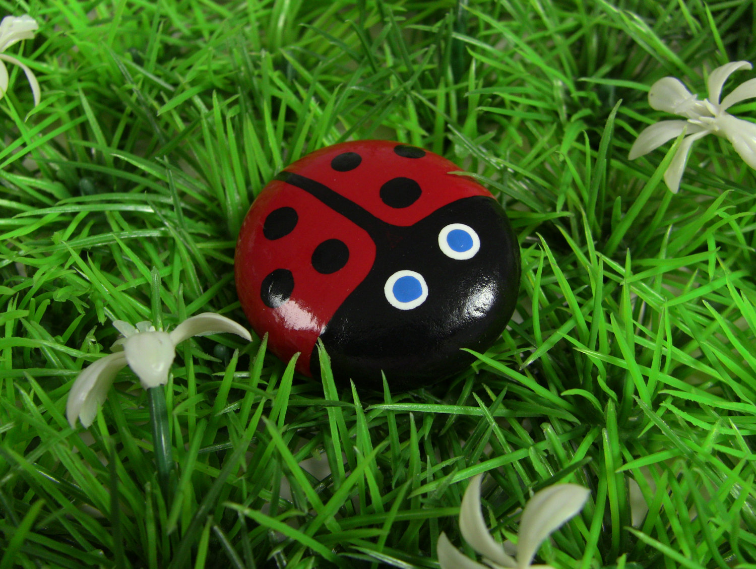 Image Result For How To Start A Ladybug Garden